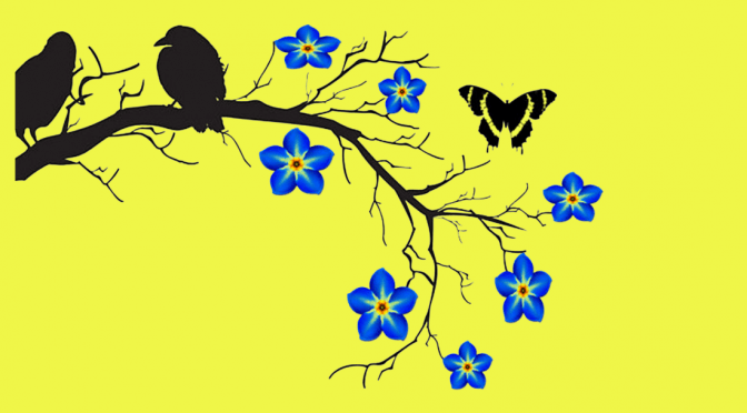 image on poster: 2 crows in silhouette sit on a bare tree branch. There are 7 forget-me-not flowers extending from smaller branches. Each flower has 5 blue petals with a yellow and black centre. Amid the flowers there is also a black and yellow butterfly floating just above the branch.